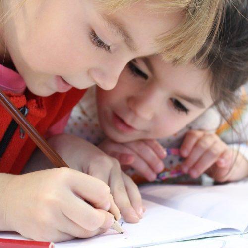 Через две недели в школах Новосибирска начнется ажиотаж