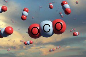К созданию в Новосибирске карбонового полигона привлекут бизнес