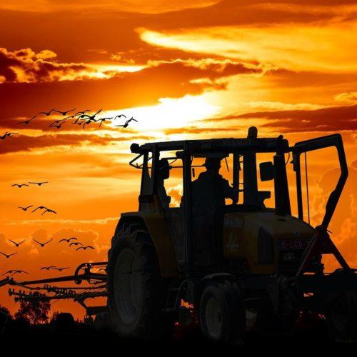 Сельхозтехнику пустят на трассу