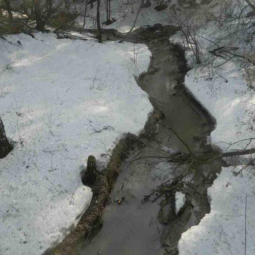 Новосибирск попросит федеральные деньги на малые реки