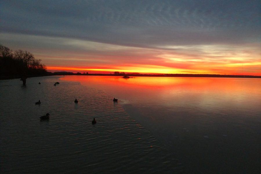 sunrise-4876548_960_720