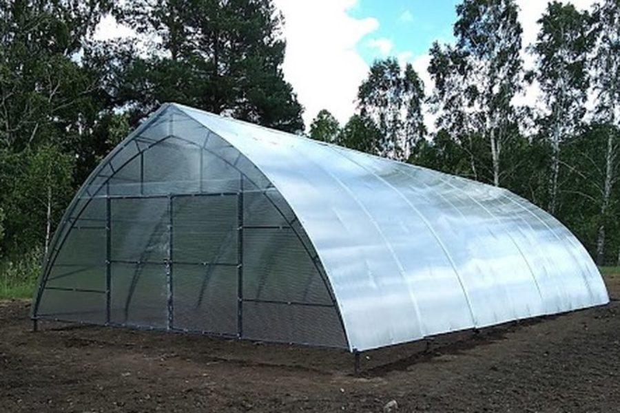 Новосибирская компания «Домпомидор» разработала энергоэффективные теплицы