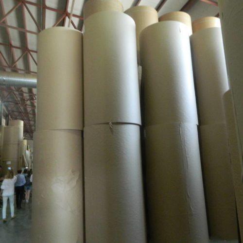 В Новосибирской области появится еще одна бумажная фабрика
